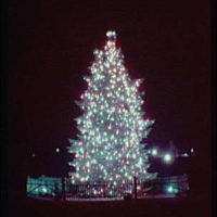 Christmas subjects. Christmas tree at Lafayette Square, vertical