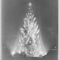 Christmas trees and decorations. Community tree I