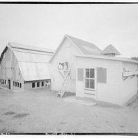 Farming scenes. Goats and barn