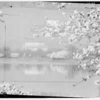 Lincoln Memorial. View of Lincoln Memorial, cherry blossoms and Tidal Basin I