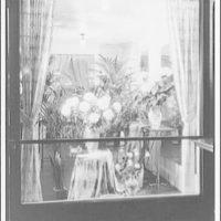 Mayflower Hotel. Flower shop window from Mayflower Hotel lobby