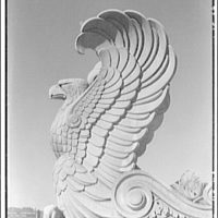 National Archives. Stone eagle on top of National Archives Building I
