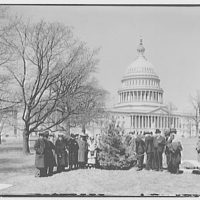 Planting of tree on U.S. Capitol grounds. Tree planting I
