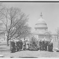 Planting of tree on U.S. Capitol grounds. Tree planting II