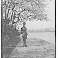 Theodor Horydczak and family. Theodor Horydczak in uniform standing on walkway bordered by cherry trees