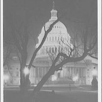 U.S. Capitol exteriors. East front of U.S. Capitol through trees at night