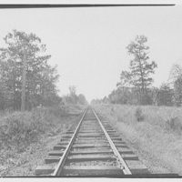 Waldorf, Maryland and vicinity. View down railroad tracks III