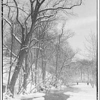 Winter scenes  Icicles II | PICRYL