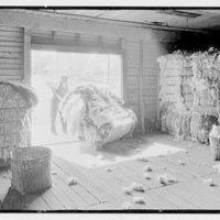 Ware Shoals, South Carolina. In a cotton warehouse