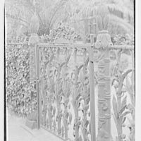 New Orleans photographs. Corn fence, Prytania and 4th St. II
