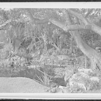 Palm Beach residence. Robert D. Huntington, residence on Travellers Way, pool and garden