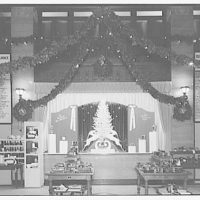 Electric Institute of Washington, Potomac Electric Power Co. Building. Christmas displays at the Electric Institute I