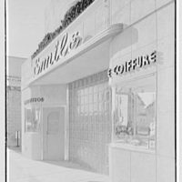 Emile's Beauty Shop, 82 N. Village Ave., Rockville Centre, Long Island. Beauty shop from right II