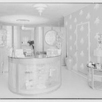 Emile's Beauty Shop, 82 N. Village Ave., Rockville Centre, Long Island. Reception desk