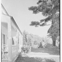 Frederick Pryor, residence on Old Mill Road, Greenwich, Connecticut. Porch and pine tree