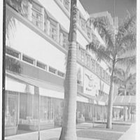 Albion Hotel, Lincoln Rd., Miami Beach, Florida. Sidewalk view of shops