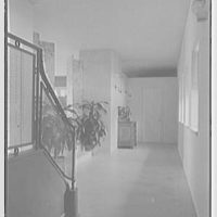 John Wentworth, residence at 2817 Lake Ave., Sunset Island, no. 1, Miami. Hall
