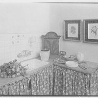 Louis H. Engel, residence in Carversville, Bucks County, Pennsylvania. Flower room