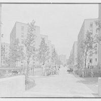 Vladeck Houses, Madison St., New York City. View III