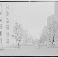 Vladeck Houses, Madison St., New York City. View X