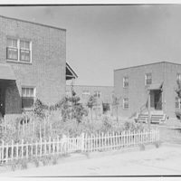 Newark Housing Authority, 57 Sussex Ave., Newark, New Jersey. Stephen Crane I