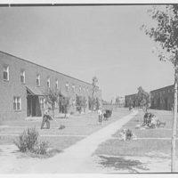 Newark Housing Authority, 57 Sussex Ave., Newark, New Jersey. Stephen Crane II