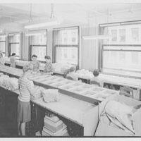 Regal Knitting Co., 1333 Broadway, New York City. Ensemble  department