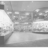 Capitol Lighting, business at 379 1/2 Springfield Ave., Newark, New Jersey. Exterior II