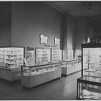 Hearn's Department Store, 14th St., New York City. Plastiques
