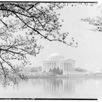 Jefferson Memorial. Left and front of Jefferson Memorial, with water and blossoms