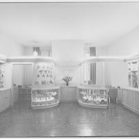 Lee C. Bland Corp., 200 5th Ave., New York City. Interior