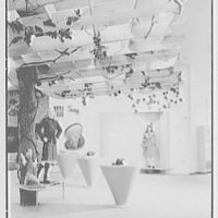 Martin's department store, business in Brooklyn, New York. Teen shop trellis