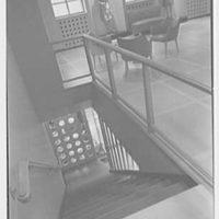 Pat Darling, business at 311 N. Howard St., Baltimore, Maryland. Looking down stairs