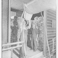 Rahr Malting Co., Shakopee, Minnesota. Loading malt in car