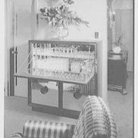Albert Tramer, residence at 141 E. 56th St., New York City. Bar