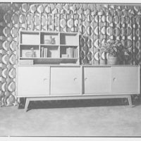 H. Kreiger, residence at 425 W. 205th St., New York, New York. View to cabinet