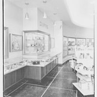 Woods, business at 120 Main St., Hempstead, Long Island, New York. Interior IV