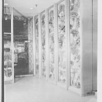 Barton's, business at 208 W. 42nd St., New York City. View to display nooks II