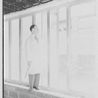 Bellevue Medical Center, New York Hospital. Doctor at window