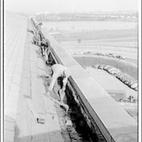 International Nickel Co. at the Pentagon. Removing old material from gutter at the Pentagon