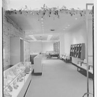 I. Miller Shoe Store, business at 218 N. Charles St., Baltimore, Maryland. General view
