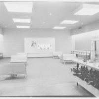 Ansonia Shoes, business at 110 E. Franklin Ave., Hempstead, Long Island, New York. Interior, to rear
