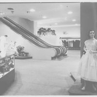 Hahne & Co., business in Montclair, New Jersey. Toward escalator