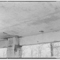 Morristown Memorial Hospital, Morristown, New Jersey. Ceiling I