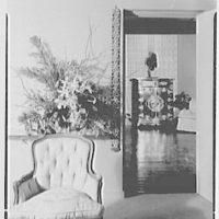 Patricia Murphy, apartment in Manhasset, Long Island, New York. Living room, detail and vista
