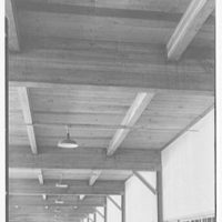 Riis Trucking Corp., 28 Travis St., Cambridge, Massachusetts. Large warehouse ceiling, vertical
