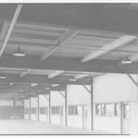 Riis Trucking Corp., 28 Travis St., Cambridge, Massachusetts. Large warehouse ceiling