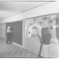 Walter R. Dolan Junior High School, Tom's Rd., Stamford, Connecticut. Showcase and lockers