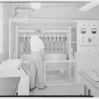 Long Island Light and Power Co., Mineola, Long Island. Glove tester