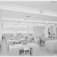 August A. Busch Co., 111 6th St., Cambridge, Massachusetts. General view of office